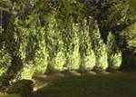 освещение участок функциональное смешанное декоративное планировка проект светильник прожектор комфорт лампы галогенные накаливания ртутные натриевые оптоволокно люминисцентные металлогалогенные светодиоды