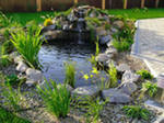 планировка участок зонирование план гараж баня беседка пруд коммуникации растения дворик терраса канализация водопровод