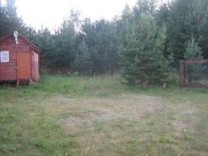 лес река участок беседка электричество дача забор земли поселения